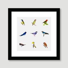 Birds of Bandung 01